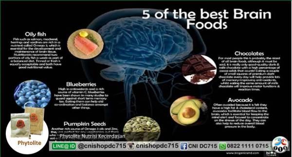 5 Makanan Ini Bisa Bantu Otak Lebih Fokus
