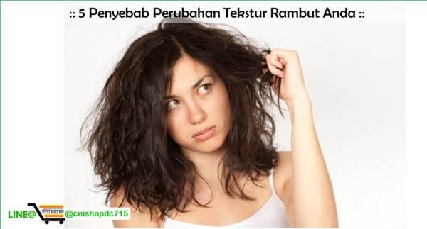 5 Penyebab Perubahan Tekstur Rambut Anda