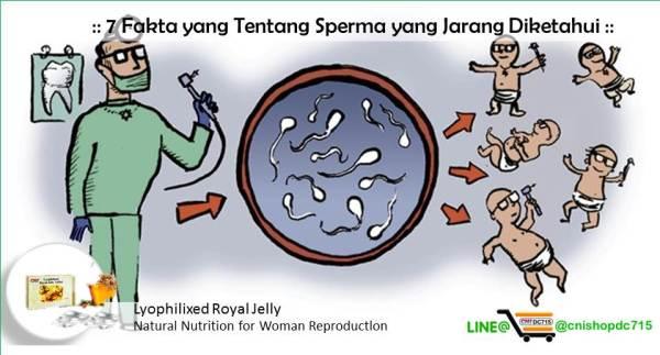 7 Fakta yang Tentang Sperma yang Jarang Diketahui