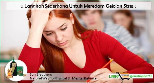 Langkah Sederhana Untuk Meredam Gejolak Stres