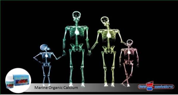 fakta-fakta-tentang-tulang-anda