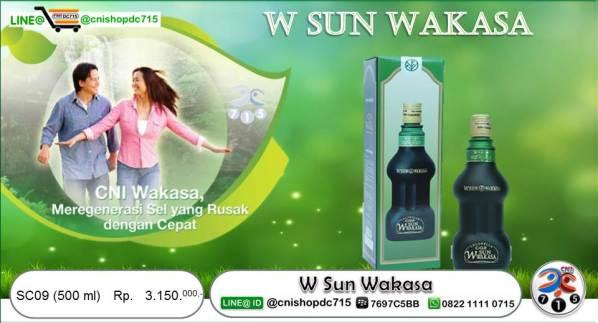 Slide9 W SUN WAKASA