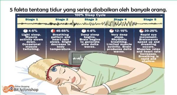 5 Fakta Tentang Tidur yang Sering Diabaikan