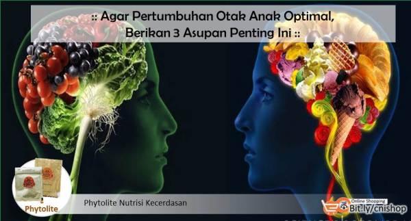 Agar Pertumbuhan Otak Anak Optimal, Berikan 3 Asupan Penting Ini