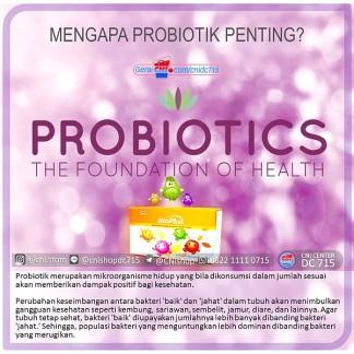 produk-cni-bioplus-mengapa-probiotik-penting