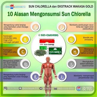 10 Alasan Mengonsumsi Sun Chlorella