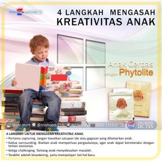 4 Langkah Phyto lite Mengasah Kreativitas Anak