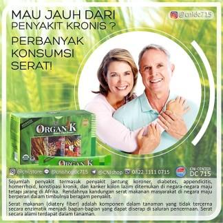 organik dietary fiber Serat makanan (diatery fiber) dan Manfaatnya
